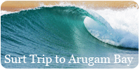 Surf Trip to Arugam Bay